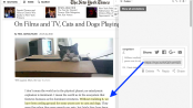 hypothes.is-nytimes-kitty-CROP-2